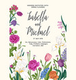 garden and forest flowers vector image