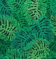 Ink hand drawn jungle leaves seamless pattern vector image
