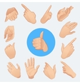 set of woman hands in various gestures isolated vector image vector image