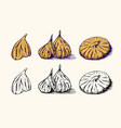 fresh fig dried fruit foliage detox spice vector image vector image