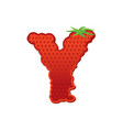 letter y strawberry font red berry lettering vector image vector image