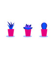 set cacti in pots bright color combinations vector image