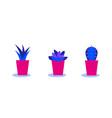 set cacti in pots bright color combinations vector image vector image