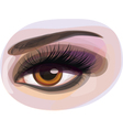 womans eye vector image