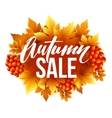 Autumn sale lettering design Fall leaf Label vector image