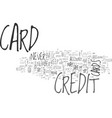 basic credit card safety tips text word cloud vector image vector image