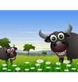 buffalo cartoon with nature background vector image vector image