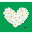daisy heart 380 vector image vector image