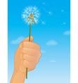Dandelion Flower vector image vector image