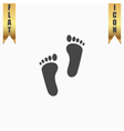 footprint - icon vector image vector image