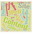 How To Protect Your Website Content text vector image vector image
