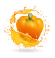 orange bulgarian pepper bell realistic icon vector image vector image