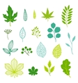 Set of green leaves and elements vector image