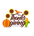 thanksgiving card lettering with bird corn and vector image