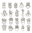 Domestic Plants Icon Set vector image