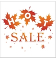 Hot sale background vector image vector image
