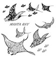 manta ray and fish vector image