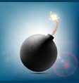 round metal bomb with a burning fuse vector image vector image