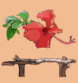 drawn isolated red tropical flower and wooden vector image vector image