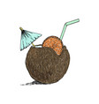 exotic coconut cocktail sketch hand drawn vector image