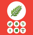 flat icon natural set of garden jungle vector image vector image