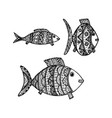hand drawn fish with ethnic ornament vector image vector image