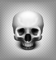 skull transparent background vector image vector image