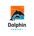 two dolphin logo designs and a box vector image vector image