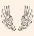 two wings of an angel vector image