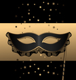 black mask with lace vector image vector image