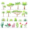 Different types of tropical plants trees flowers vector image vector image