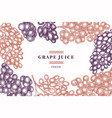 grape design template hand drawn grape berry vector image