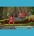 scene with two monkeys in zoo vector image vector image