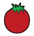 tomato vegetable nutrition food icon vector image