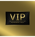 VIP business card vector image vector image