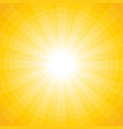 yellow background with a white sun with rays and vector image vector image