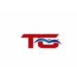 TG letter logo vector image vector image