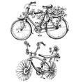 Bikes with flowers drawings set vector image vector image