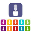 cactaceae cactus icons set flat vector image vector image