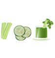 Cucumber juice vector image vector image