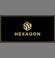 dg hexagon logo vector image vector image