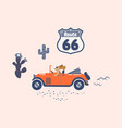 dog drives a retro car on a route sixty six vector image