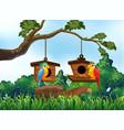 garden scene with two parrots vector image vector image