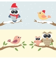 Set of owls and birds sitting on branch vector image vector image