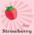 Template of strawberry label vector image