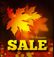 autumn sale background with leaf texture vector image