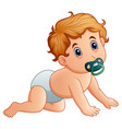 baby boy sucking on pacifier vector image vector image