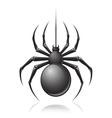 Black spider emblem vector image vector image