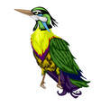 brightly colored tropical bird isolated on a white vector image vector image