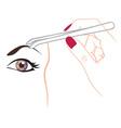 curling eyebrows vector image vector image